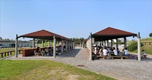 穴場スポット1:二色の浜公園